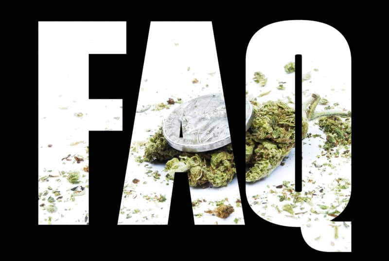 FAQ sign in white with cannabis buds in the background, questions about marijuana