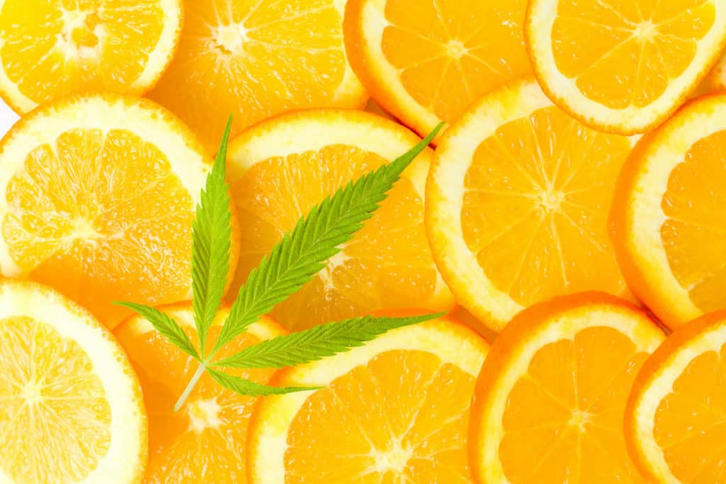 Orange fruit slices and marijuana leaf, orange crush strain