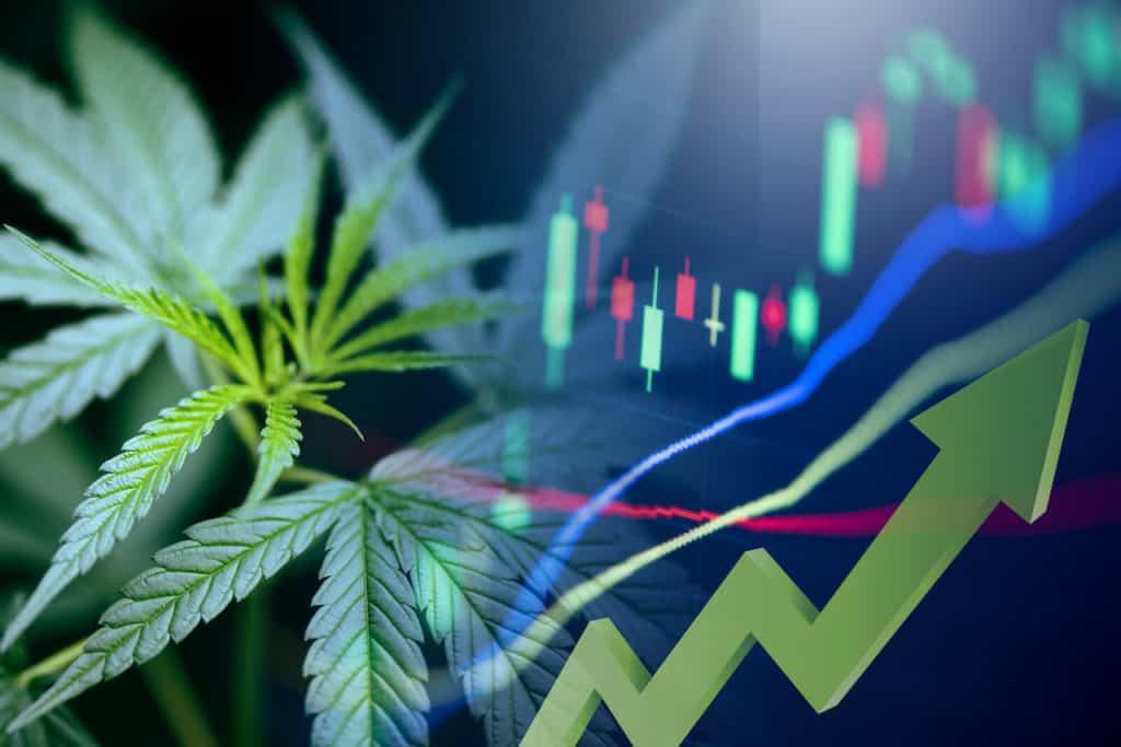 stock graph with marijuana leaves, best marijuanas stocks 2021