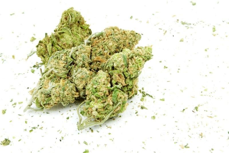 marijuana buds on isolated white, wifi og strain