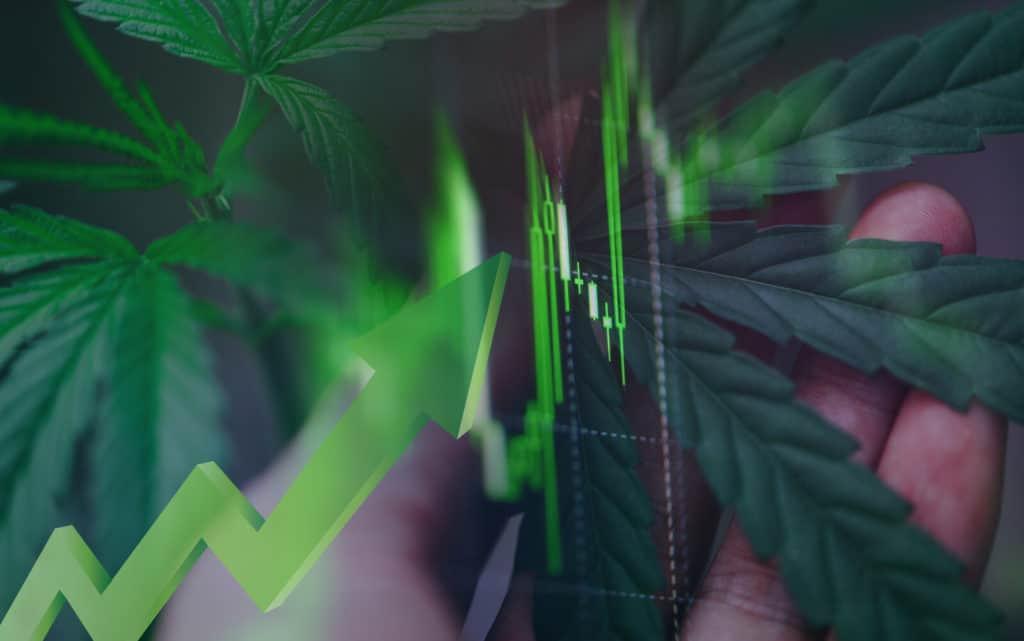 blurry version of a stock chart, top marijuana stocks 2021