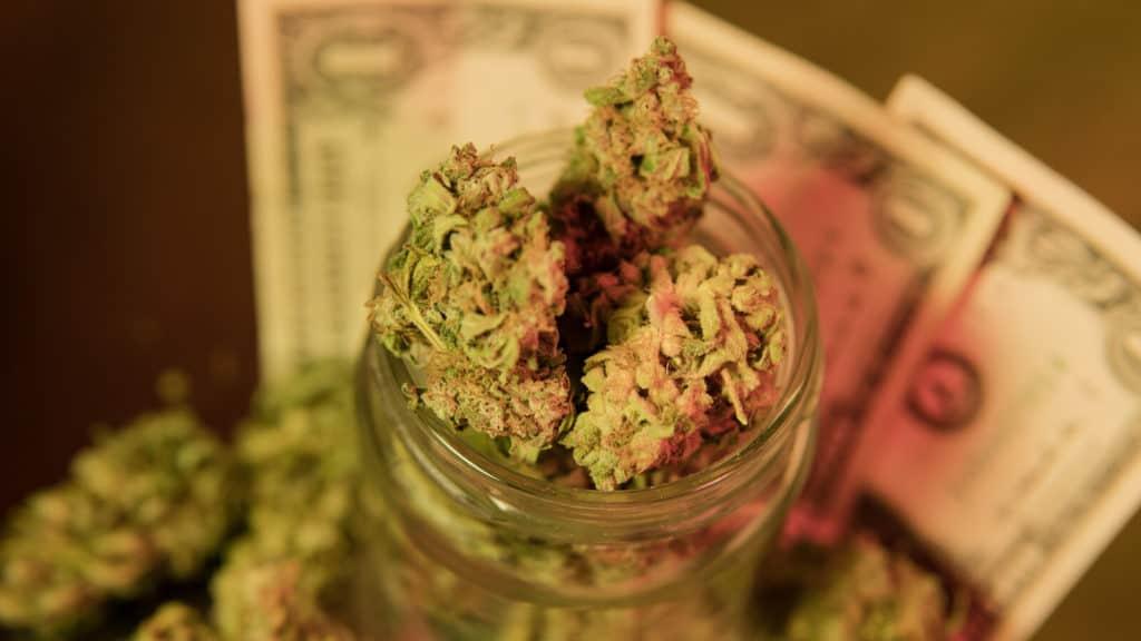 cannabis buds and dollar bills, dispensary jobs