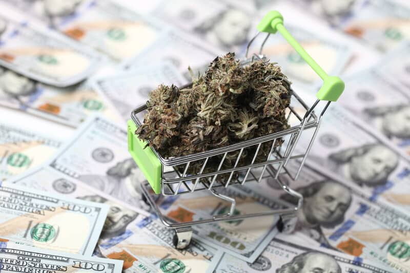 a small shopping cart with weed in it on top of 100 dollar bills, how to start a weed business
