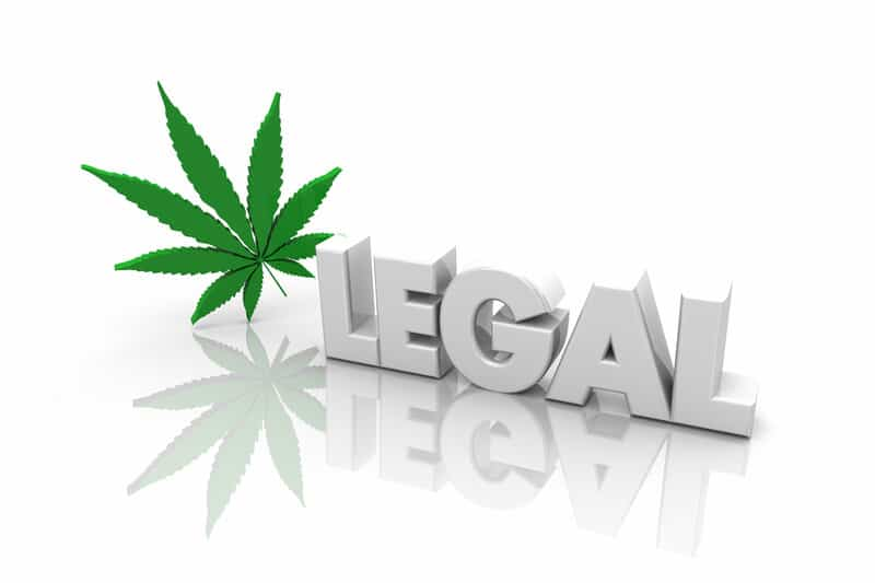 pot leaf next to letters that spell out legal, will Biden legalize marijuana