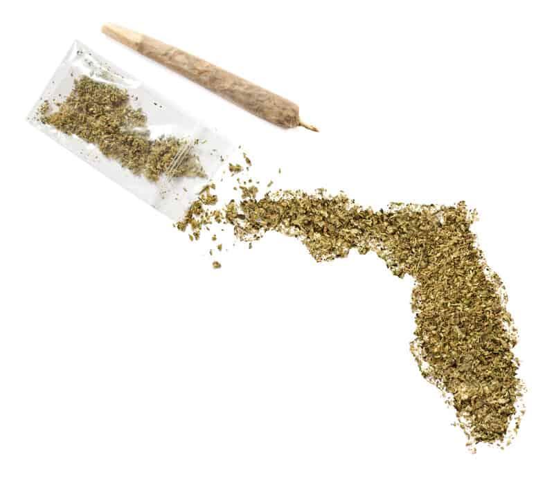 florida marijuana legalization