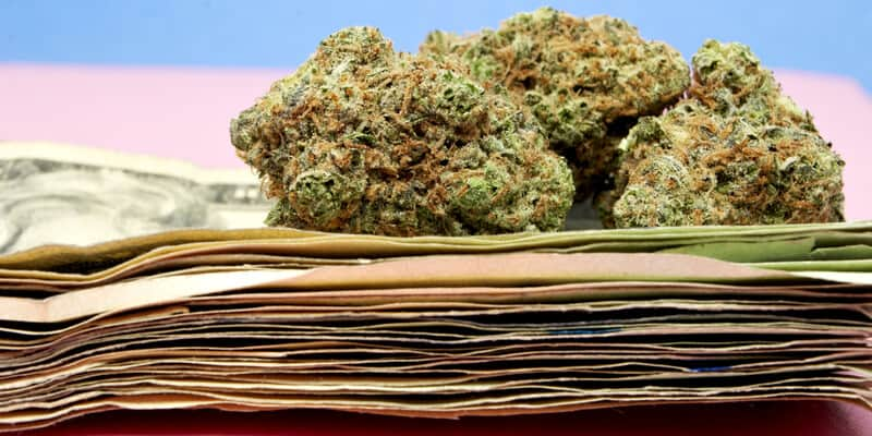 learn how to become a budtender in nevada
