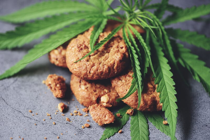 cookies and marijuana leaves, cannabis careers
